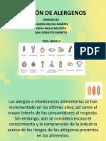 GESTIÓN DE ALERGENOS.pptx