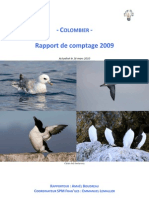 Rapport Comptage