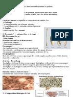 7.Ostéologie