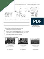 Estudo_Meio_revisões.pdf
