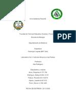 Informe Nº 6 Fisiología Vegetal