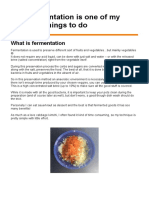 Fermentation Blogpost