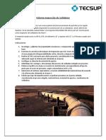 trabajo_13700.pdf