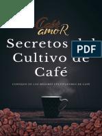 Master Café Cultivador - CaféAmor - I.pdf
