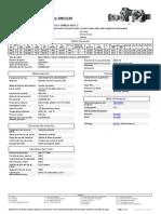datasheet motor WEG