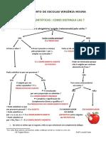Funções sintáticas- esquema