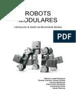 IDMRM0910_Trabajo_RobotsModulares_v2