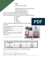 Ficha-Trabalho-Sistema-Respiratório