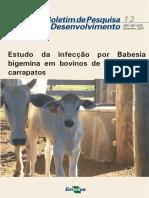 Estudo da infecção por Babesia em bovinos.pdf