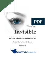 Vien Do Al Invisible