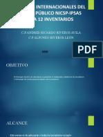 IPSA 12 INVENTARIOS  JUNIO 2020 PTSE (2)