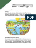 guia ecosistema