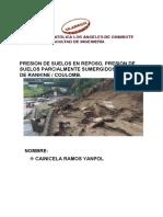 PRESION DE SUELOS EN REPOSO