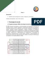 TAREA_INDIVIDUAL_3_Caren_VIllca_1.docx