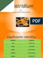 75086341-clostridium.pptx