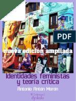Identidades feministas y teoría crítica