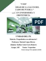 Tarea 1 Unidad del paciente.docx