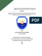 JOANA CABRAL ESTADO EMERGENCIA.docx