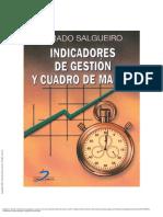 Indicadores de gestión y cuadro de mando - Amado Salgueiro.pdf
