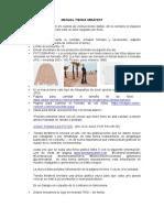Manual Tienda Mirafest (1).pdf