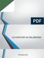 La nutrición en las plantas