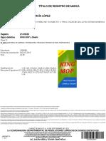 DocVidoc (1).pdf