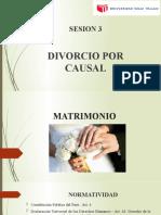 DIVORCIO POR CAUSAL (1)