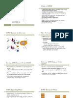 Lecture6-cs169.pdf