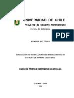 Tesis - EVALUACIÓN DE 3 FACTORES DE ENRAIZAMIENTO EN ESTACAS DE MORERA (Morus alba).