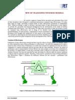 models of team effectiveness