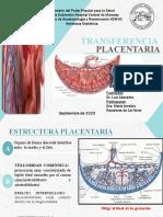 TRANSFERENCIA PLACENTARIA