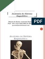 Aula de sistema esquelético- anatomia humana nassau parte 1