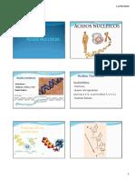 Aula 3 – Estrutura dos ácidos nucleicos e replicação do DNA