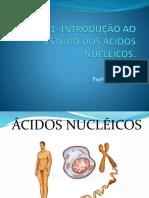 AULA 1-  Introdução ao estudo dos ãcidos nucleicos