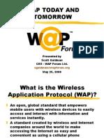 IWUK-WAP-Goldman-1