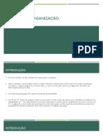 Domínio da Organização.apresentação