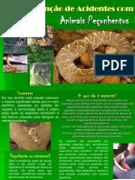Apresentação - Prevenção de Acidentes por Animais Peçonhentos