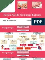 Recién Nacido Prematuro Extremo.pptx