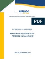 EXPERIENCIAS DE APRENDIZAJE DICIEMBRE 2020.pdf