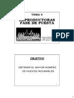 Tema_06._Puesta_de_reproductoras