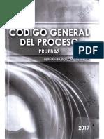 Libro de Pruebas.pdf