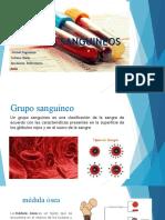GRUPOS SANGUINEOS (1)