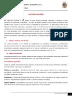 TRABAJO 7.1 (CULTIVO CELULARES)