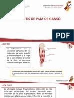 tendinitis.pptx