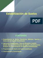 4. ESTABILIZACIÓN.pdf