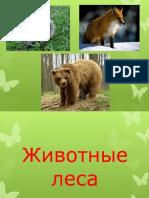Животные леса.pptx