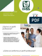 Perfil del médico familiar.pdf