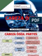 CLASE CABEZA OSEA 15 03 19