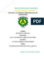 Botánica Agrícola- Quinua- Rocio Irene Lucano Tarrillo