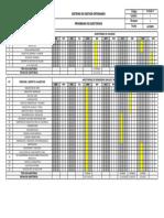 FOR-02-17_Programa de Auditorias_V01